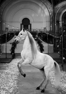 Chanel white horse haute couture 2021